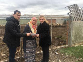 Genç Çiftçi Projesinde Tekirdağ'a 4,53 Milyon Tl Hibe Desteği